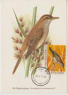 Carte Maximum 1970 Oiseaux Yv 413 - Burundi