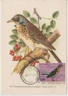 Carte Maximum 1970 Oiseaux Yv 417 - Burundi