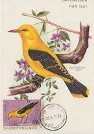 Carte Maximum 1970 Oiseaux Yv 418 - Burundi