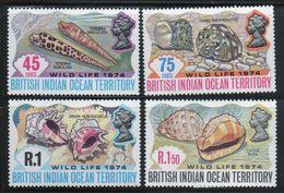 British Indian Ocean Territory 1974 Set Of Stamps To Celebrate Wildlife 2nd Series. - British Indian Ocean Territory (BIOT)