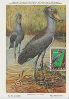 Carte Maximum 1963 Oiseaux Bec En Sabot 485 - République Du Congo (1960-64)