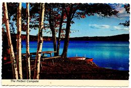 United States Modern Postcard The Perfect Campsite - United States