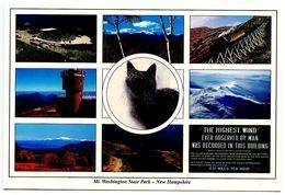 United States Modern Postcard Mount Washington, New Hampshire /w Cat - White Mountains