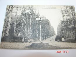 C.P.A.- Forêt De Bercé (72) - Rond Point Des Renardières - 1910 - SUP (AJ 41) - France