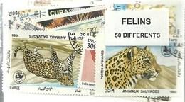 """Lot 50 Timbres Thematique """" Felins """" - Félins"""