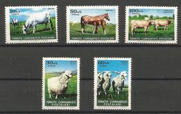 Turkey - 1964 Animal Protection MNH **     Mi 1919-23    Sc B98-102 - 1921-... Republic