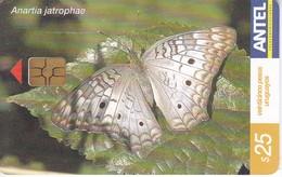Nº 388 TARJETA DE URUGUAY DE UNA MARIPOSA (BUTTERFLY) - Farfalle