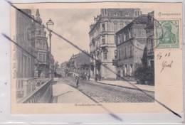 Saargemünd / Sarreguemines (57) Neunkircherstrasse (carte Précurseur De 1902) - Sarreguemines