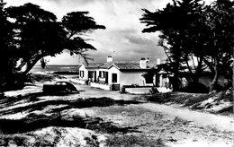 Cpsm (85)--bretignolles-sur-mer  Plage De La Normandelière. - Bretignolles Sur Mer