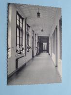 WILRIJK Instituut Ste.-URSULA Binnengang () Anno 19?? ( Zie Foto Details ) ! - Antwerpen