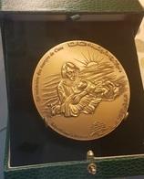 LEBANON 1996 Cana Mazzacre Bronze Memorial Medal - Lebanon