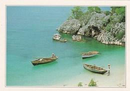 HAITI COCO BEACH RETOUR DE PECHE (dil387) - Cartes Postales