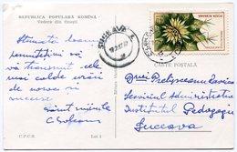 Romania - Postcard - Carte Postale - Unclassified