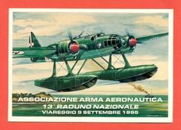 13° RADUNO ASS.ARMA AERONAUTICA - VIAREGGIO - IDROVOLANTI - AEREI - Riunioni