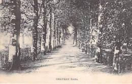 33 - TALENCE : Chateau RABA ( Allée D'arrivée ) - CPA - Gironde - Altri Comuni