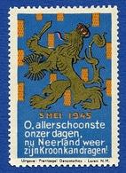 CINDERELLA : NETHERLANDS : 5 MEI 1945 ALLERSCHOONSTE NEERLAND - Cinderellas