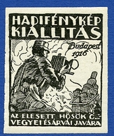 CINDERELLA : BUDAPEST 1916 - KIALLITAS - Cinderellas