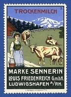 CINDERELLA : ALLEMAGNE - LUDWIGSHAFEN - MARKE SENNERIN TROCKENMILCH - Cinderellas