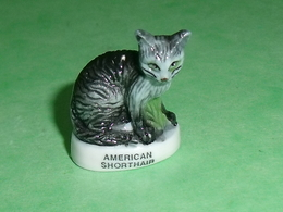 Fèves / Animaux / Chats : Chat American Shorthair   T94 - Animals