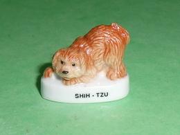 Fèves / Animaux / Chiens : Chien Shih - Tzu   T65 - Animals