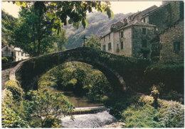 12. Gf. BROUSSE-LE-CHATEAU. Superbe Pont à Une Arche - France