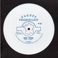 """Disque Souple 45T.publicitaire  """"France Lait """" N° 28 / Sirop Typhon : Gorman,Richard Anthony - Musique & Instruments"""