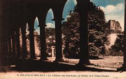 CHATEAUBRIANT -44- LE CHATEAU VUE INTERIEURE LE CLOITRE ET LE VIEUX DONJON - Châteaubriant