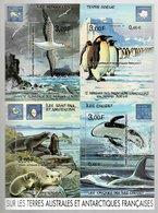 France 2001 TAAF Feuillet Jean-Claude Mézières (albatros - Manchot Empereur - Otarie - Orque) - Ungebraucht