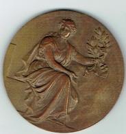 Luxembourg, LASEP1972 Bonze - Tokens & Medals