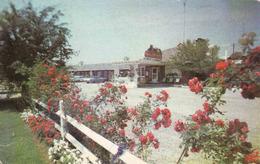 Canada > Ontario > Hamilton Coach And Four Motel,  Used 1972 - Hamilton