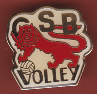 53192- Pin's-CS Bayeux Volley-Ball, Bayeux, Basse-Normandie.Lion.. - Volleyball