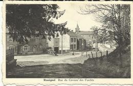 Rossignol Rue Du Caveau Des Fusillés  (9856) - Tintigny