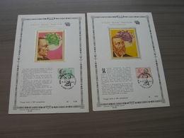 BELG.1974 1729 & 1730, SOIE ! +/- 240 X 165 Mm (400 Exemplaires) - 1971-80