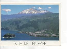 Postcard - Isla De Tenerife - Unused Very Good - Unclassified