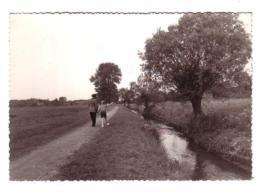 Woluwé-St-Lambert : Promenade Le Long De La Woluwe - Woluwe-St-Lambert - St-Lambrechts-Woluwe