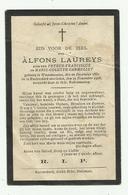 Doodsprentje  *  Laureys Alfons (° Waasmunster 1880 /  + Ruiterskerk 1906)  Zoon Petrus & Carmeliet Marie-Colette - Godsdienst & Esoterisme