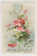 C.Klein.Flowers.OWW Edition Nr.5767 - Klein, Catharina