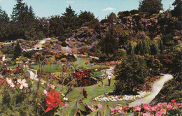 Canada > British Columbia > Vancouver, Queen Elizabeth Park, Used 1971 - Vancouver