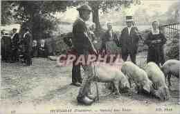 CPM Huelgoat (Finistere) Marche Aux Porcs Cochons - Huelgoat