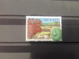 Belize - Natuur- En Cultuurerfgoed (25) 2017 - Belize (1973-...)