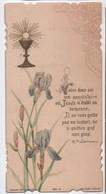 Image Religieuse/Souvenir De Première Communion/Edmond VITOUX/ ND D'EPERNAY/Bonamy/ Poitiers/1902       IMPI29 - Images Religieuses