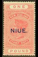 1918-29 £1 Rose- Pink On Cowan Paper, SG 37c, Never Hinged Mint. For More Images, Please Visit Http://www.sandafayre.com - Niue