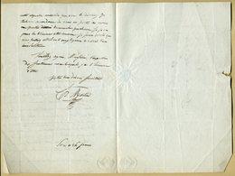 Henri Martin (1810-1883) - Historien Et Homme Politique Français - Lettre Autographe Signée - 2 Pages. - Autographes