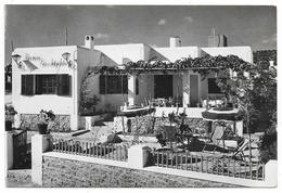 Cpsm: ESPAGNE - IBIZA - SAN ANTONIO - Pension Los Angeles - Terrazas N° 3728 - Ibiza