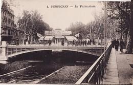 66 PERPIGNAN -- Le Palmarium + Glacier D.COUGUL - Perpignan
