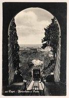 Capri Funicolare E Porto   VIAGGIATA 1959  COD C.2035 - Napoli