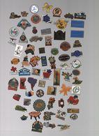 Pin's LOT..PETIT LOT - Badges