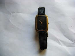 Montre Suisse Ancienne Emile Pequignet à Geneve - Watches: Top-of-the-Line