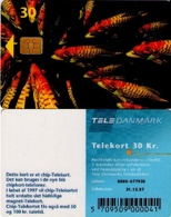 TARJETA TELEFONICA DE DINAMARCA. TDD004C, Fish; SN 6500 (077) - Dinamarca