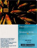 TARJETA TELEFONICA DE DINAMARCA. TDD004D, Fish; SN 6500 (074) - Dinamarca